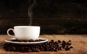 I Love Coffee gets a BizBoost