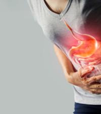 Taking probiotics and no prebiotics may be a waste as stomach acid kills them