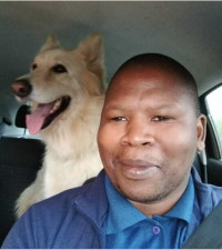 Strange encounter with big canine helps remove man's fear of dogs