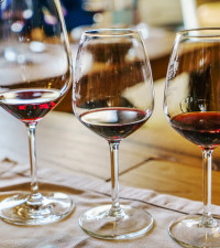 Wines of South Africa: Wine exports increased by 7.7% in 2020