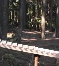 [WATCH & LISTEN] Japan's incredible sound garden will soothe your senses