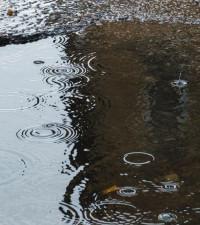 [PHOTOS] KZN community hosts pothole 'fishing' competition