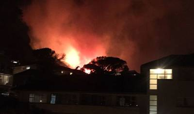Officials battle large vegetation fires in Vredehoek & Oranjezicht