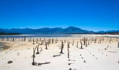 Western Cape dams continue to dry up