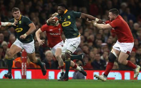Wales and Springboks agree on June date in Washington