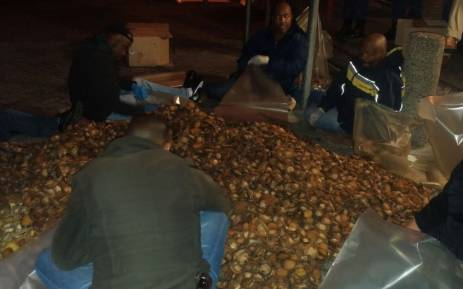 Police members seen at a house in Khayelitsha on 8 September 2017 after discovering abalone worth R6 million. Picture: @SAPoliceService