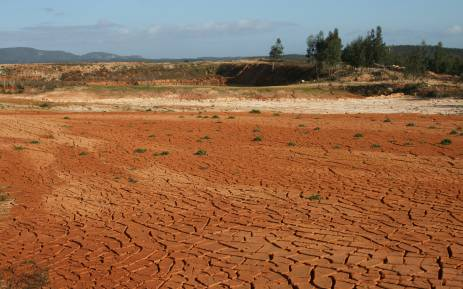 FILE. AgriSA says the current situation is largely due to a market demand that has been exacerbated by the current drought. Picture: Freeimages.com