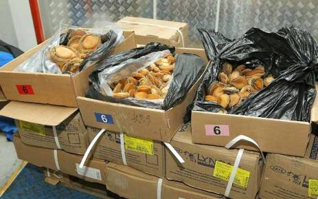 A shipment of abalone that was confiscated by police. Picture: Twitter/@SAPoliceService.