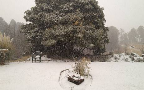 Heavy snowfall in Clarens, Free State on 7 August 2012. Picture: via Twitter @evergleamy