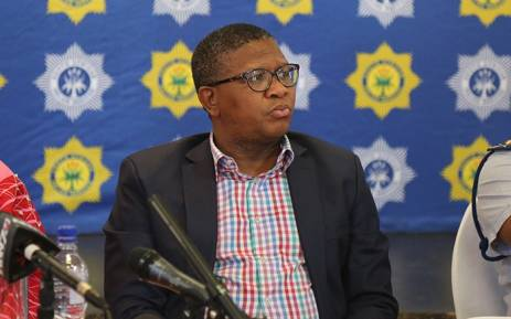 Police Minister Fikile Mbalula briefs the media after a group of Dutch tourists were attacked and robbed on their way from OR Tambo International Airport. Picture: Christa Eybers/EWN