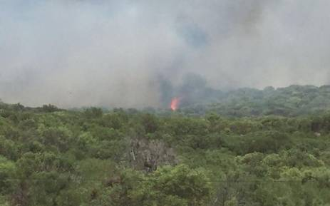 Firefighters and other teams are working closely together to extinguish the Houwhoek Pass fire. Picture: Ilze-Marie Meintjie/EWN.