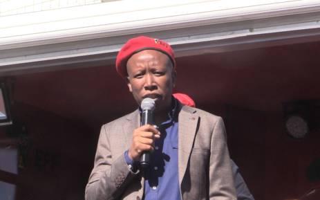 FILE: EFF leader Julius Malema. Picture: EWN.
