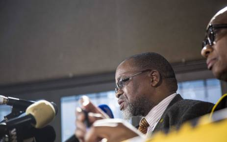 Mantashe presents organisational report to ANC NEC