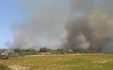 Residents have been asked to evacuate Meerenvlei estate as the flames are a couple of hundred meters away. Picture: Ilze-Marie Meintjes/EWN.