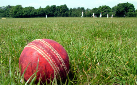 Cricket ball. Picture: sxc.hu