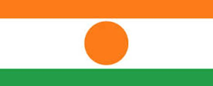 Niger flag. Picture: Supplied.