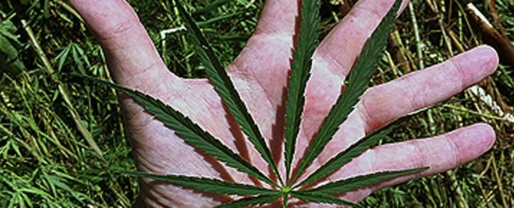 FILE: Marijuana leaf. Picture: Barry Bateman/EWN