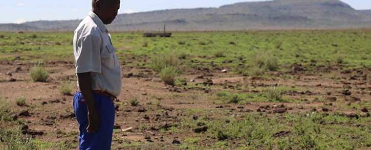 A farmer inspects his land in the Free State. Picture: Christa Eybers/EWN.