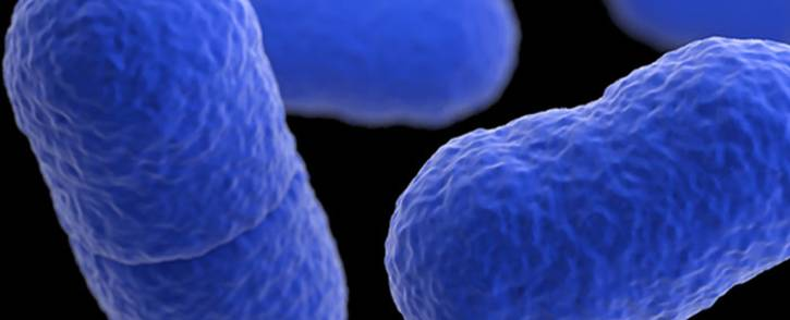 FILE: A microscopic view of the listeria bacteria. Picture: Centers for Disease Control and Prevention