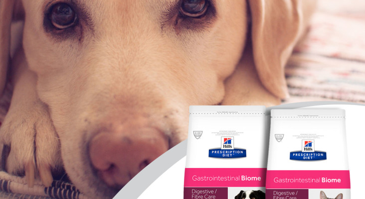 Introducing a specialist food designed to keep your pet healthy
