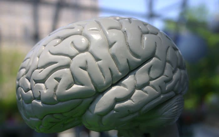 Why complaining rewires your brain to be negative