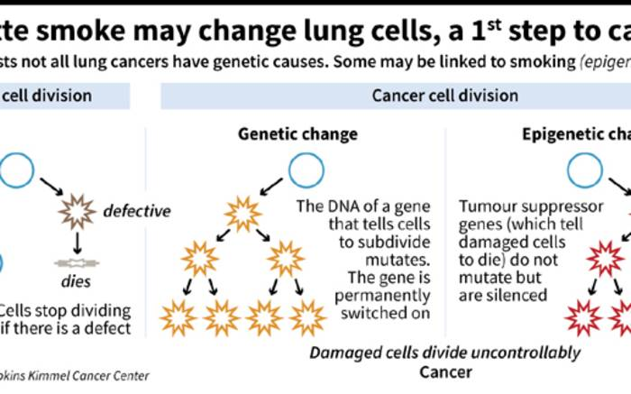 a study about cancer genes