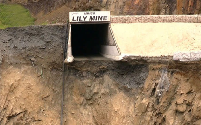 Inside the Lily Mine