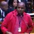 EFF's Shivambu calls on govt to establish sovereign wealth fund