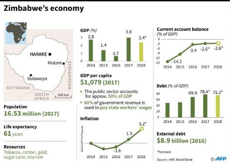 Leading economic indicators for Zimbabwe ahead of the country's elections. Picture: AFP.