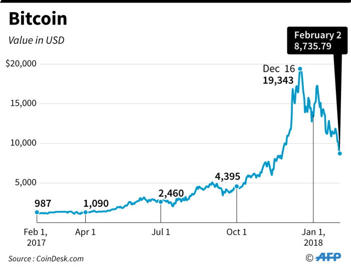 A look at the value of Bitcoin in US dollar over the last year.