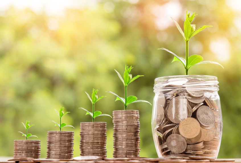 How to grow money 'babies' with your dividends