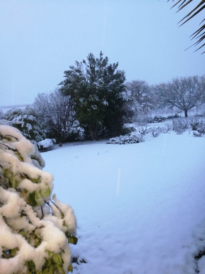 PICTURES] Snuggle up and be warm     It's snowing