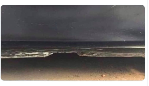 Optical illusion will make you see this like a beach scene