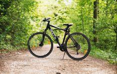 [LISTEN] Looking to start mountain biking? Here is some advice