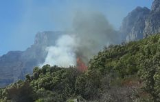 SANParks calls for reinforcements as Cape mountain blaze moves upwards