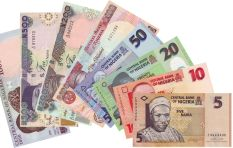 20% of Nigerian money in circulation is fake - former deputy governor