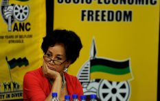 We are in denial of people marching against us - Lindiwe Sisulu