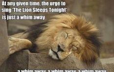 Who Stole 'The Lion Sleeps Tonight'?