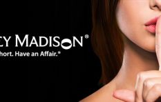 Ashley Madison: One of the juiciest hacker targets