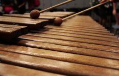 Lead SA hero Andile Ndevu hits right notes with uplifting marimba youth project