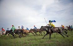 SA Adventurer Barry Armitage wins world's toughest endurance horse race