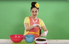 Suzelle DIY: How To Make Biltong