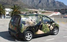 """Electric cars are too costly for SA market right now"""
