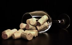 Delicious Syrah that won't break the bank? John Maytham's top 3  wine picks