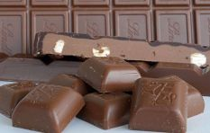 Masterclass: Cocoa and the creation of chocolates