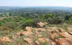 Melville Koppies - A city with a view
