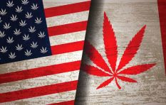 How to get rich by investing in smoking hot US and Canadian dagga shares