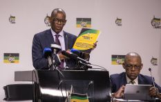ANC conference report: land summit in the works
