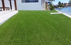 Fake lawn: How to keep your garden green in the midst of Cape Town's drought