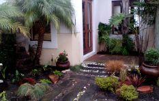 Shen mi Yuan Garden Design will make your garden the envy of the neighbourhood